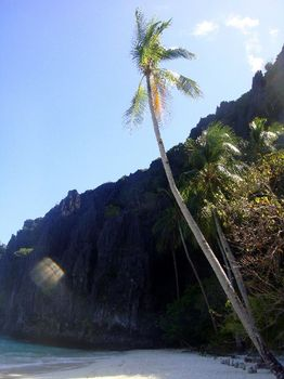 岩山からの光りと椰子の木.JPG