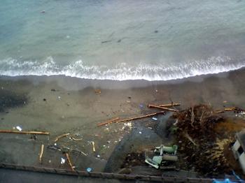 流木のある蛸の浜2.JPG